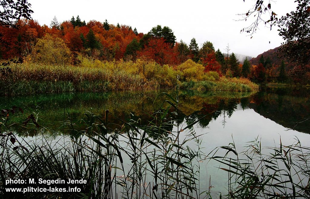 Calm Lake @ Plitvice National Park in the autumn