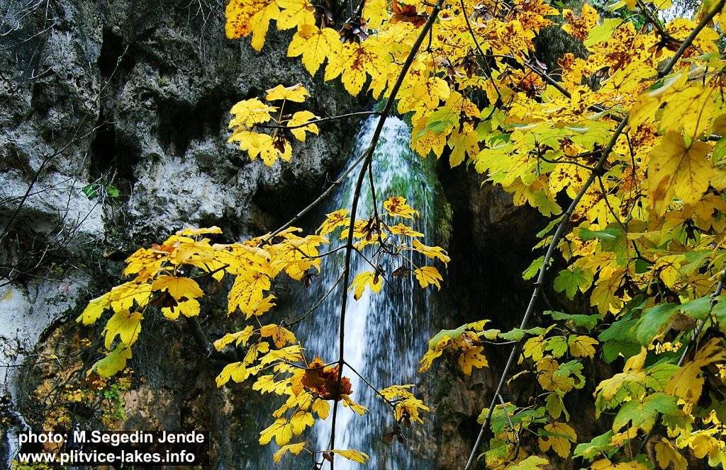 Soothing Colours of Autumn (Plitvice National Park 2016)
