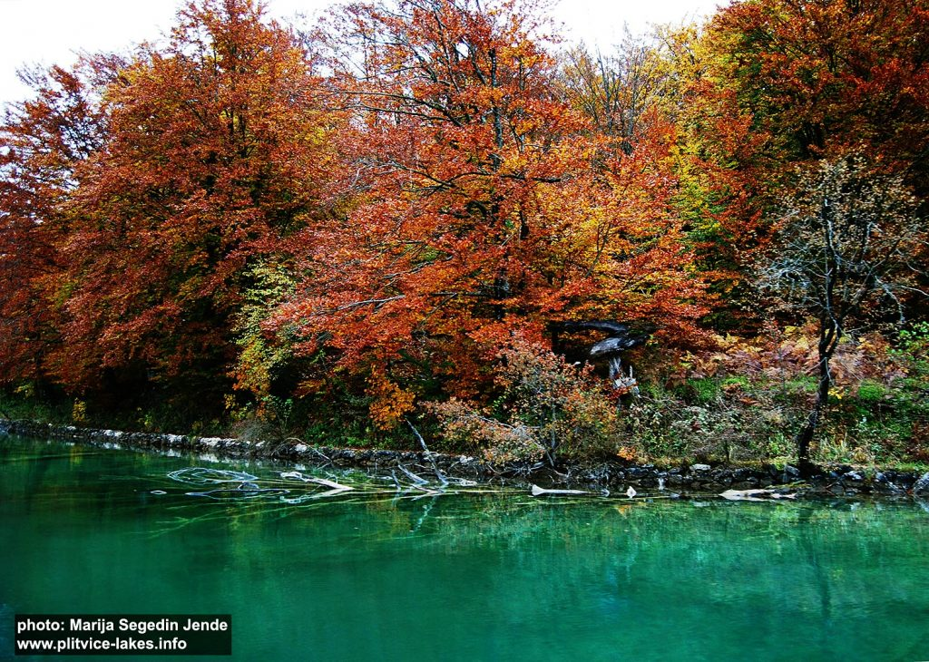 Malo Jezero (Malo Lake) @ Plitvicka Jezera