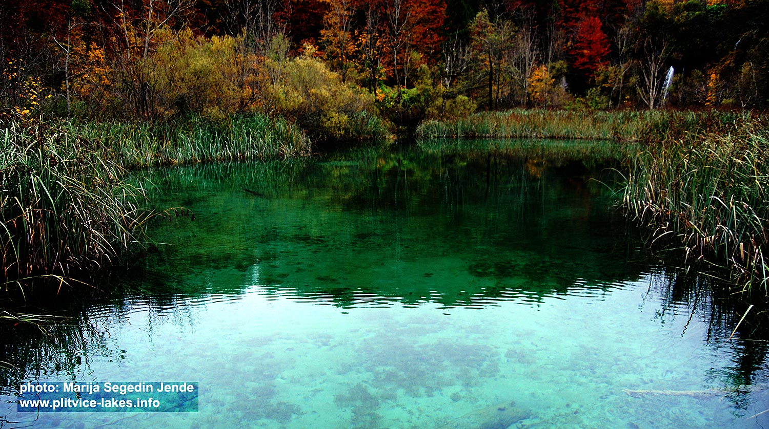 Lovely colours of Veliko Jezero Lake @ Plitvice National Park